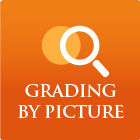 Access plan - Grading by Picture
